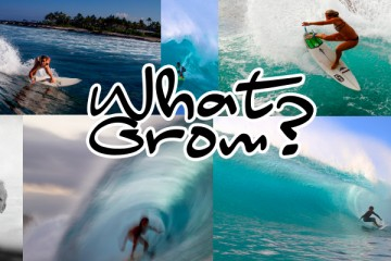 what-grom
