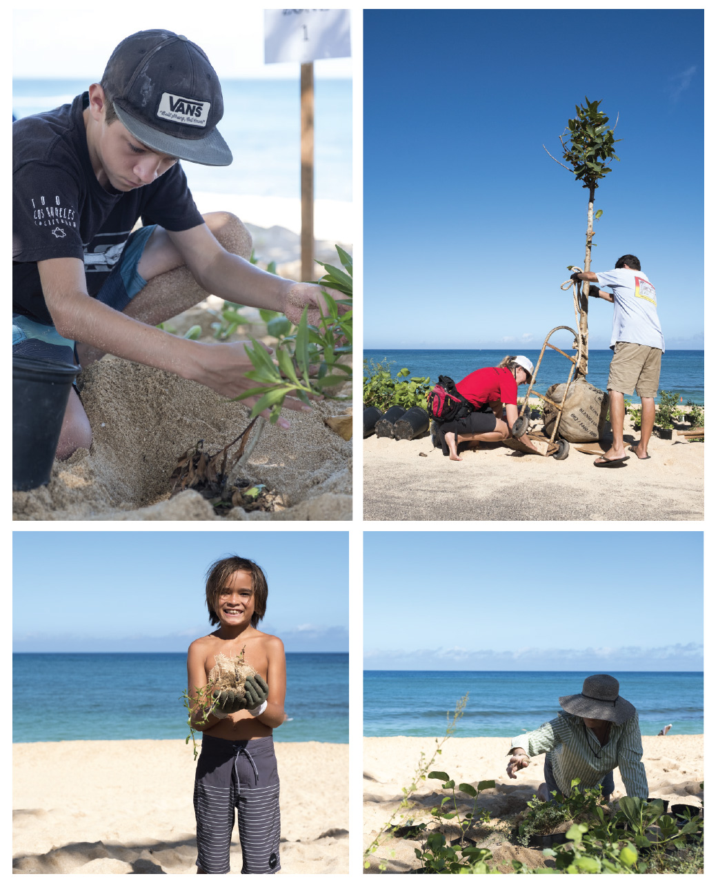 The Precarious Condition Of Sunset Beach Has Directly Affected Community Members Impacting Homeowners Public Infrastructure Native Flora And Fauna